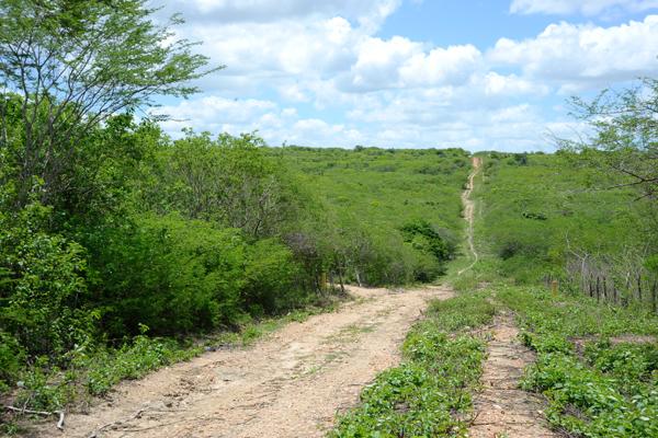 ZPE de Macaíba: Área ainda não tem infraestrutura e corre para se viabilizar...
