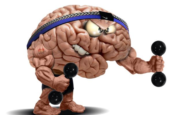 Ginástica cerebral estimula pleno funcionamento do cérebro,  aumentando a capacidade de memória, concentração, aprendizado, criatividade,  autoestima entre outros benefícios