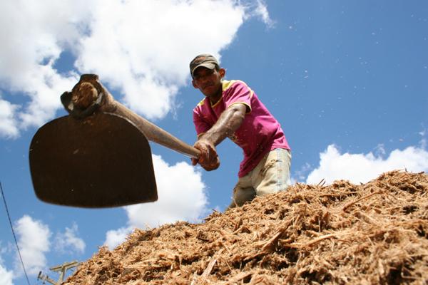 O crédito ajudará a impulsionar projetos de reconstrução e revitalização das unidades de produção