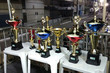 Escolas de samba campeãs do Carnaval de Natal serão premiadas após o desfile