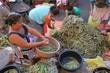 Na feira de São Paulo do Potengi, Paulo França, 49 anos, traz o feijão verde e o milho de Vera Cruz, onde mora. Ele pagou R$ 120,00 para levar 150 quilos de feijão e um milheiro de milho.